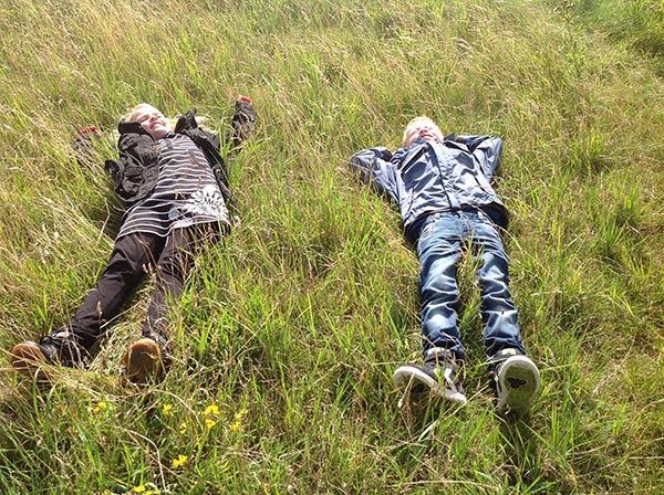 Drenge i græs